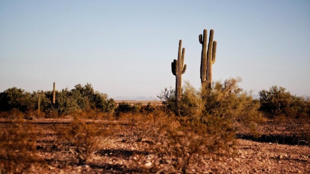 Egyre nagyobb a baj Texasban (Fotó: Pexels.com)