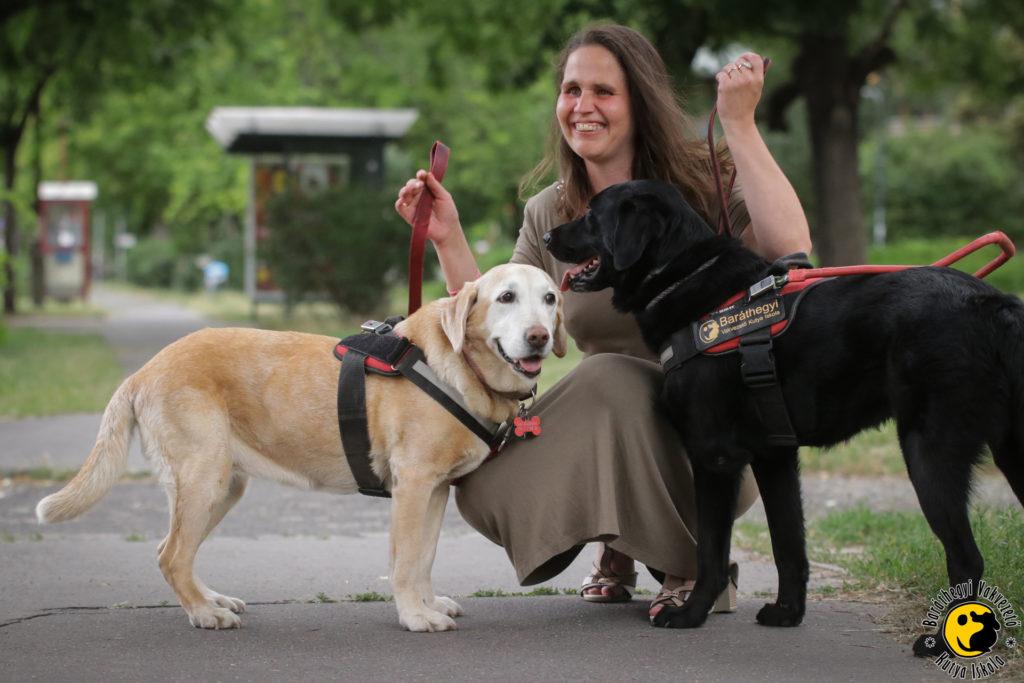 Menhelyi kutyából lett vakvezető kutyák