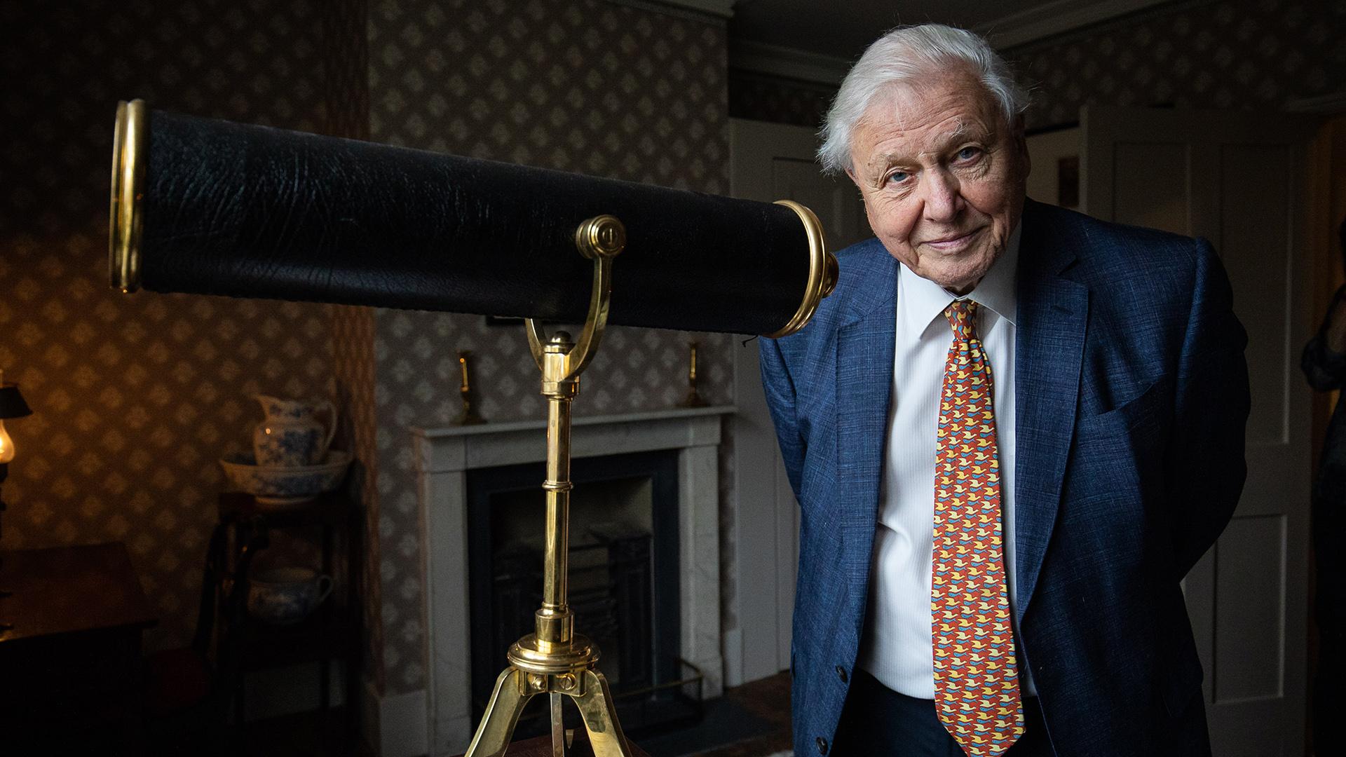 David Attenborough-val és a tokiói olimpiával indul a discovery+