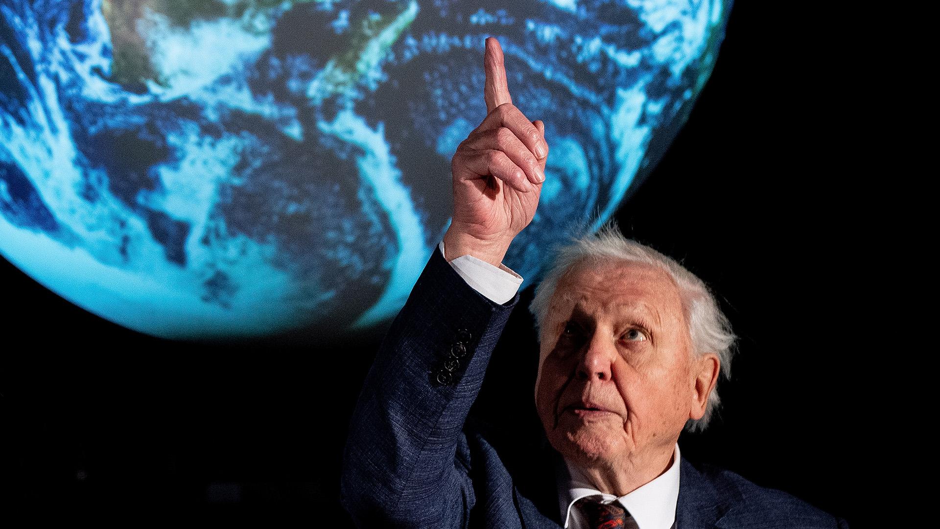 Új sorozattal jelentkezik David Attenborough