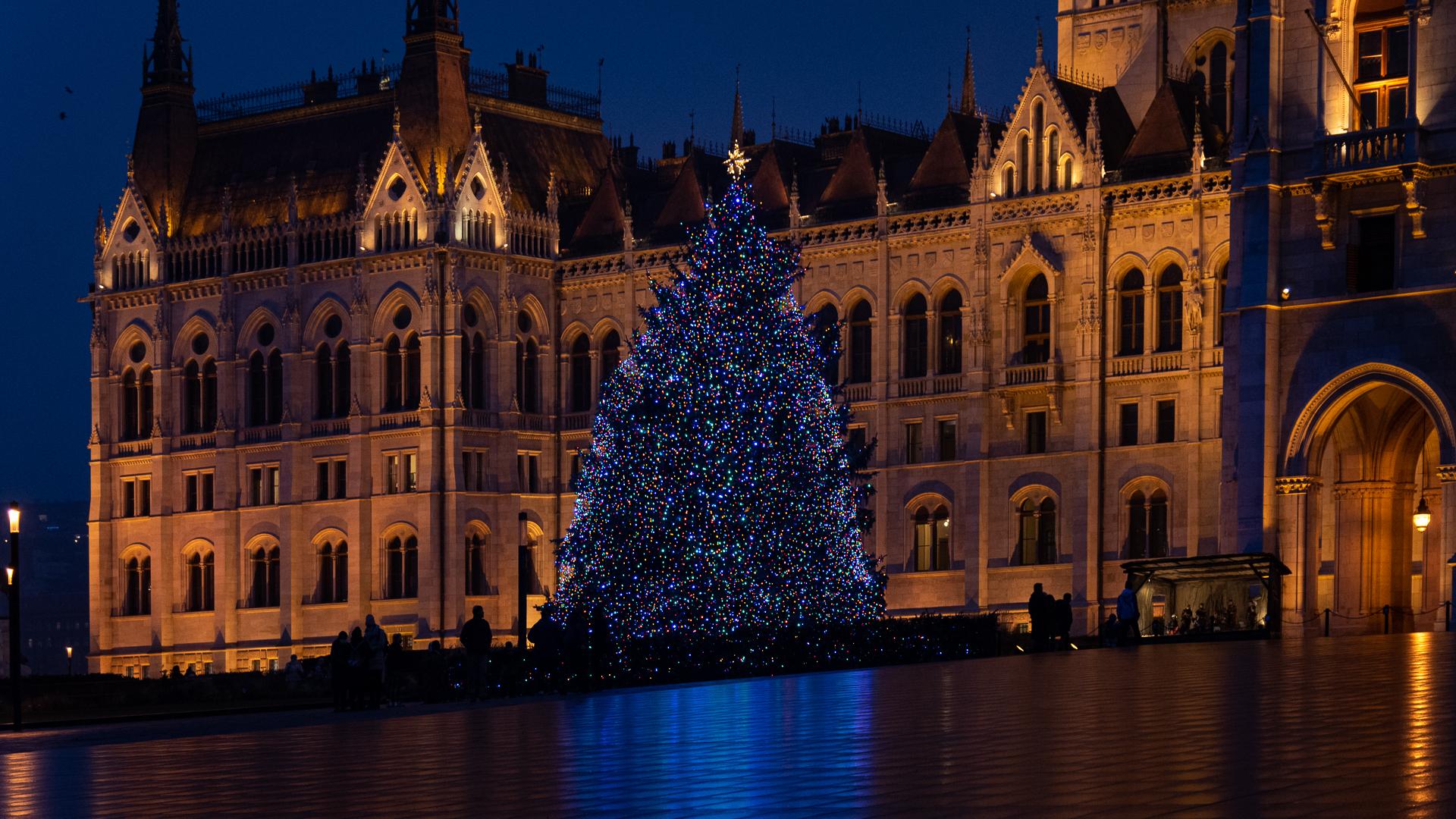 az ország karácsonyfája