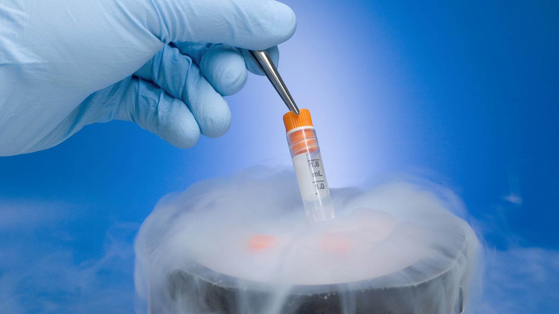 27 év fagyasztás után született meg egy embrió