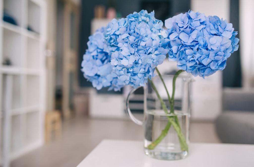 Kék hortenziát is tehetsz a karácsonyi asztalra