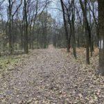 Az újpesti Farkas-erdőben a kisebb kör kb. 2.5 km, a nagyobb pedig 4.3 km.