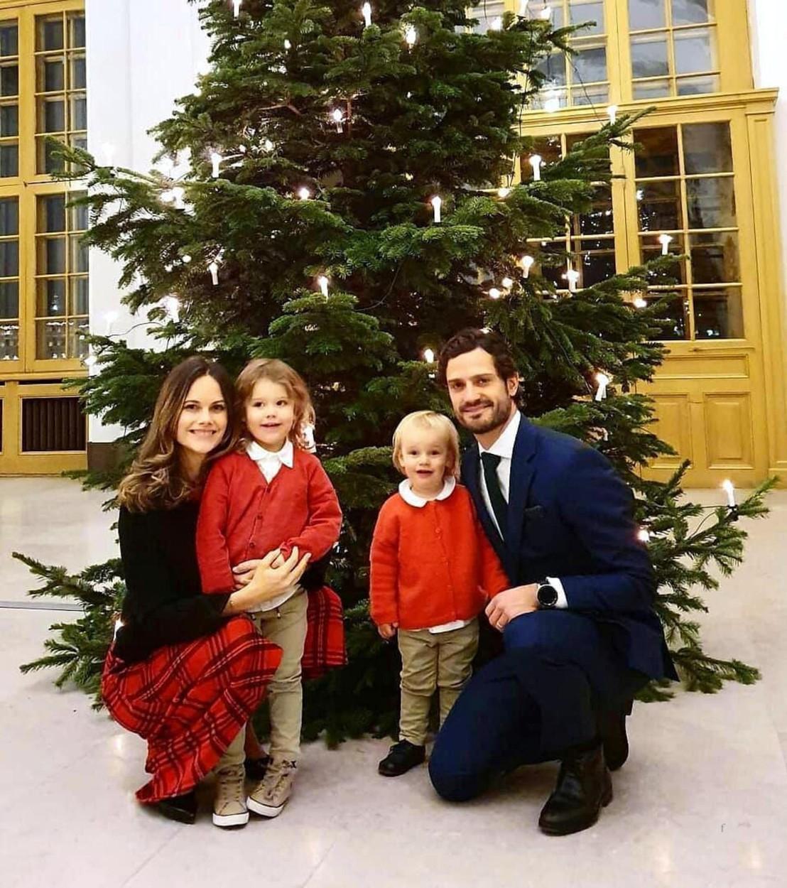 Károly Fülöp svéd herceg és Zsófia hercegné és családja