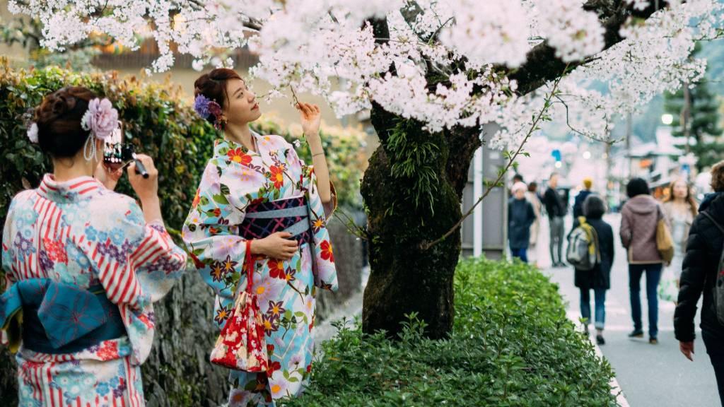 japán lányok kimonóban cseresznyefával