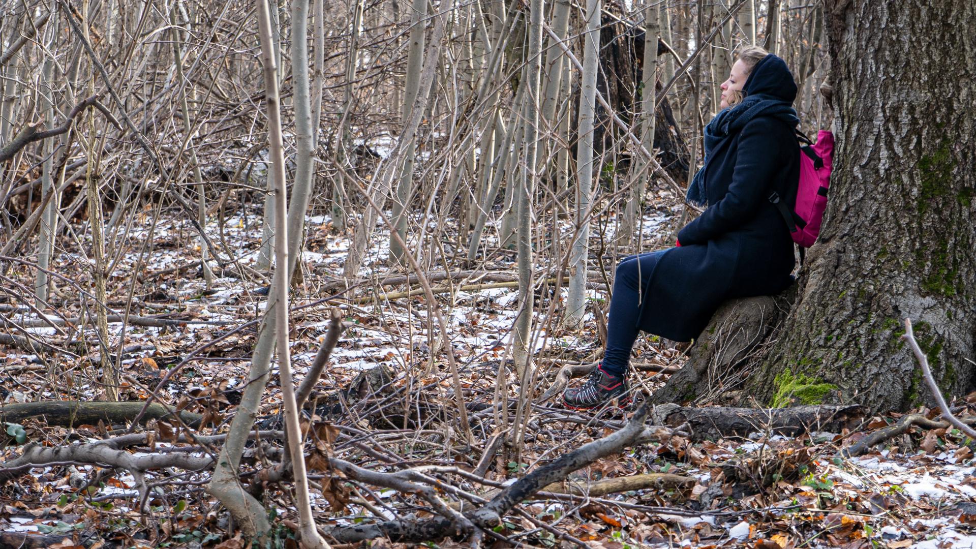 Erdőfürdő túrázás