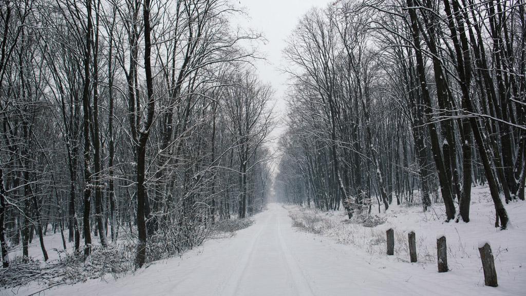 Holnap egyes helyeken már havazhat.