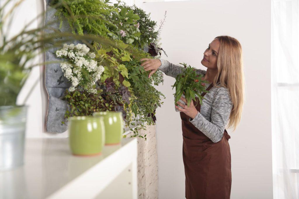 Vertikális belső kertet mi is kialakíthatunk.
