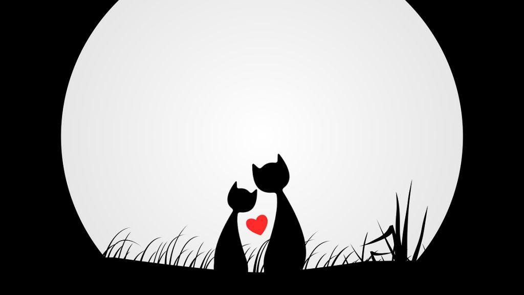 Hétvégi szerelmi horoszkóp 2021. 02. 27.