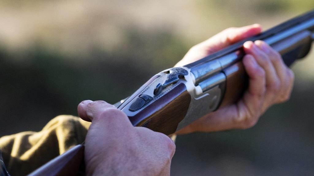 Orvvadász fegyvert fogott egy erdészre