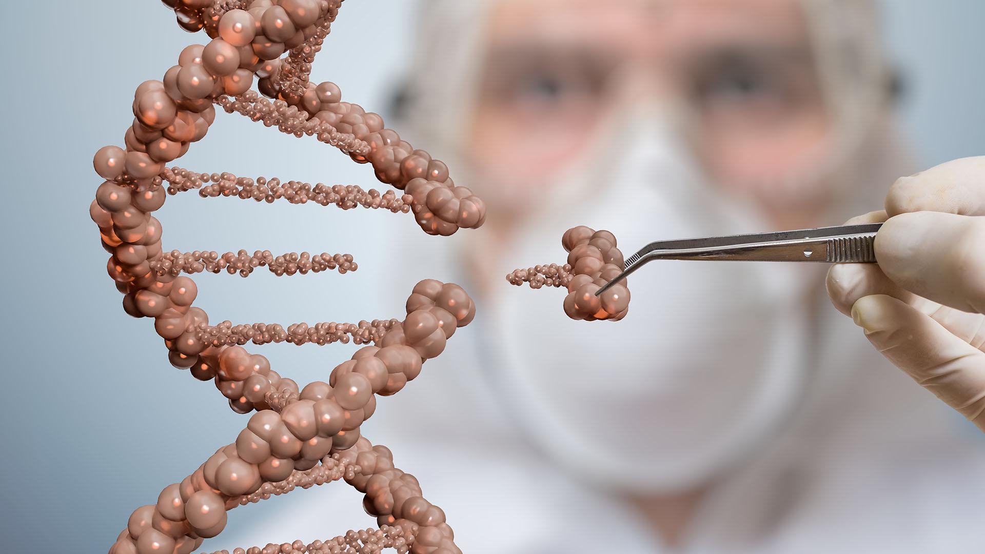 A génszerkesztéssel foglalkozik a Határtalan tudás következő előadása