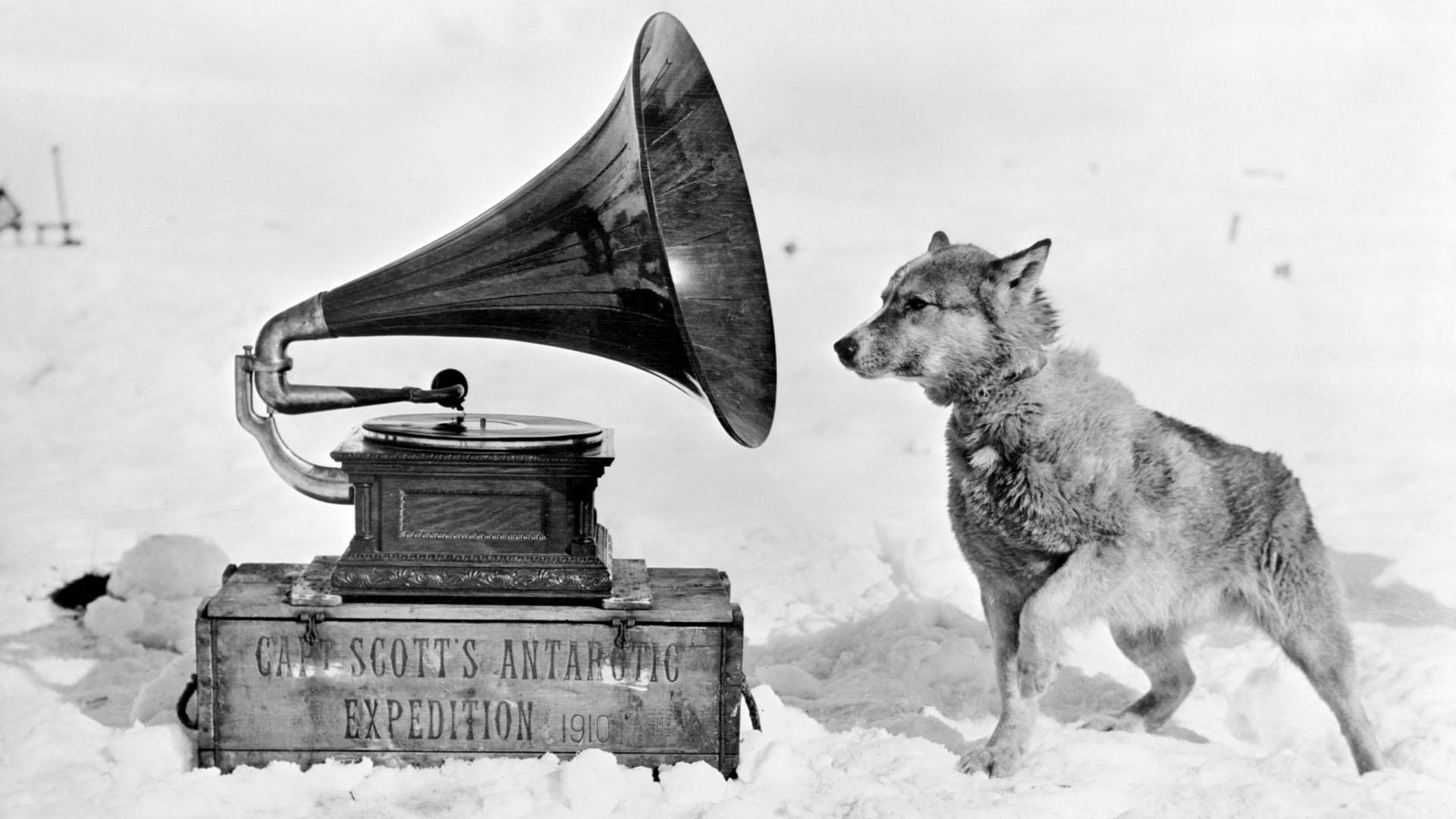 Sarkvidéki felfedezők javaslatai a bezártság ellen