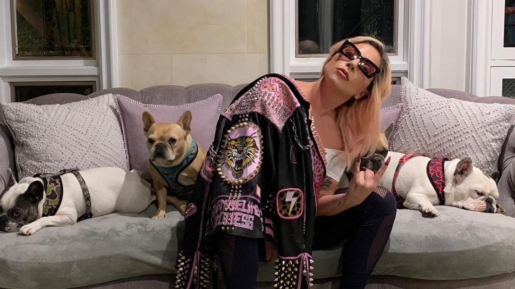 Lady Gaga és a kutyái