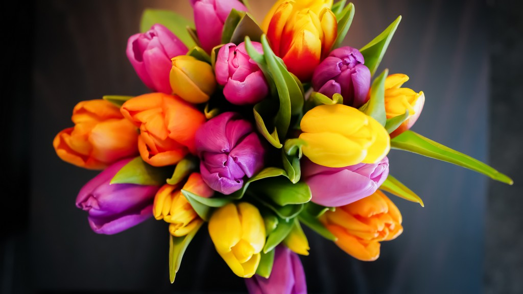Tulipáncsokor frissen tartása