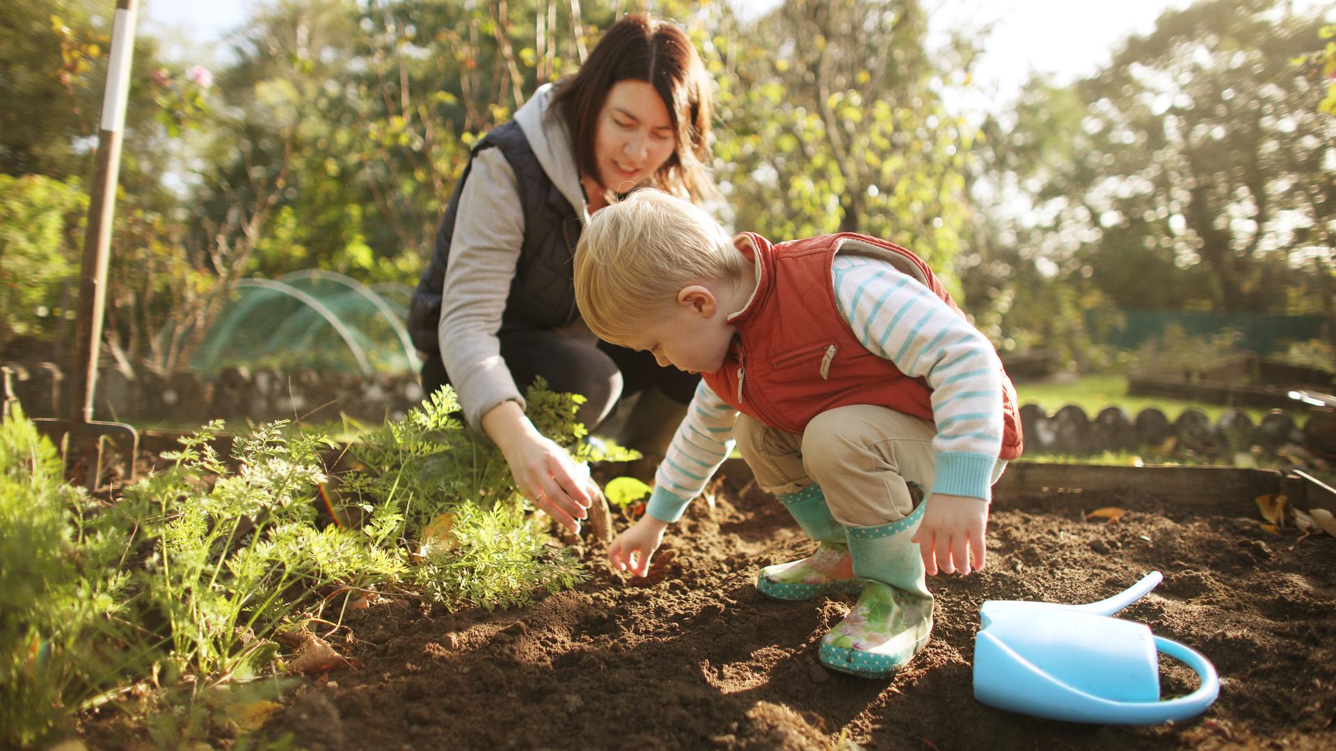 A kertészkedés hatása a pszichénkre