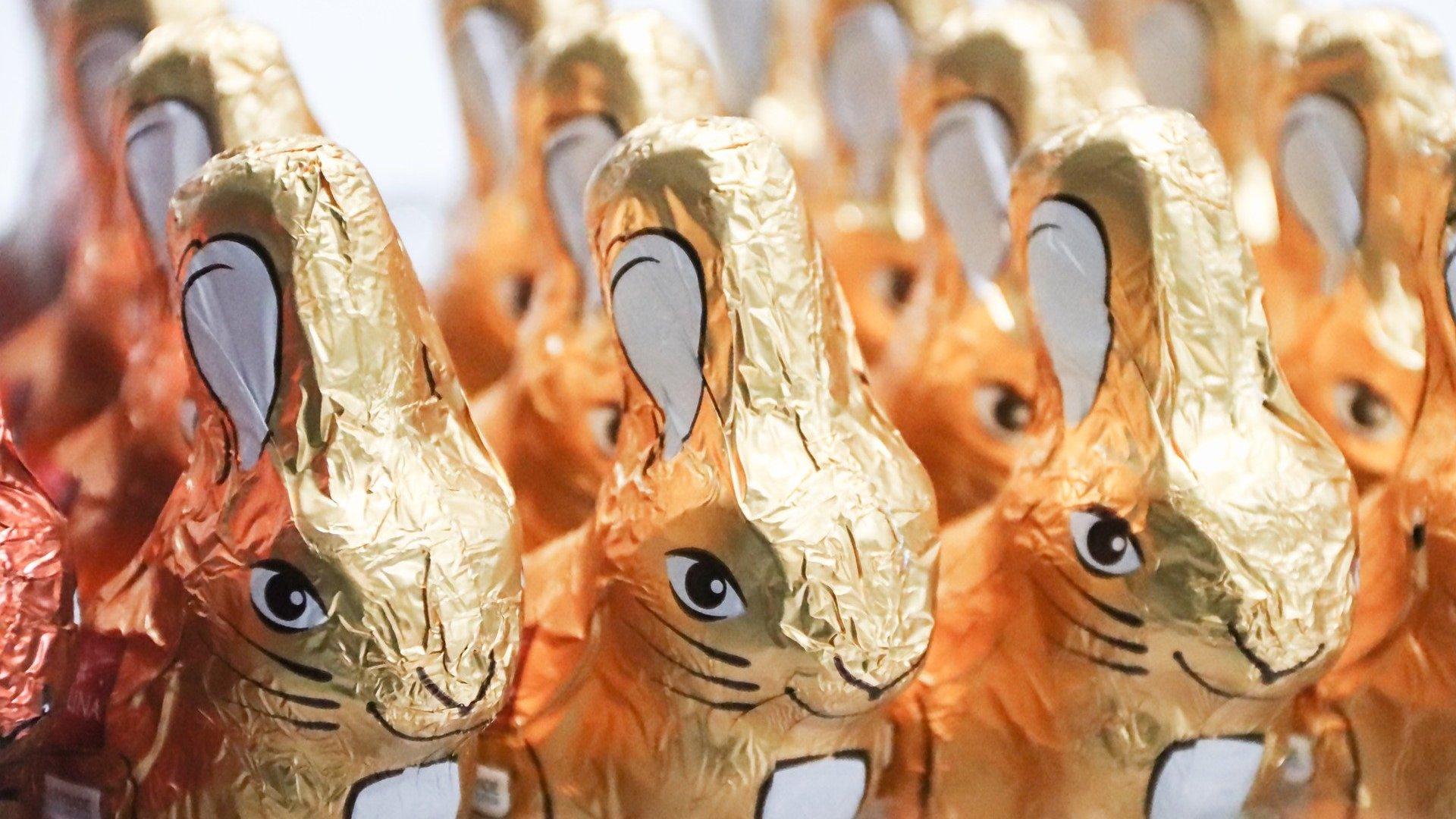 Húsvét csokinyúl