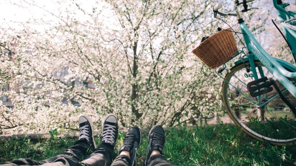 bicikli természet tavaszi virágzás