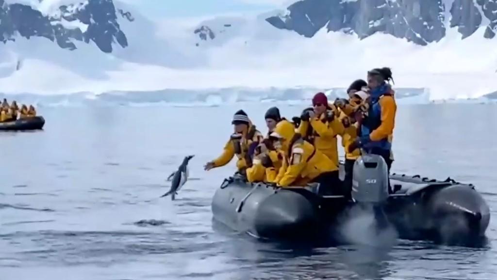 A nagy ugrás (részlet a megmenekülésről készült videóból)
