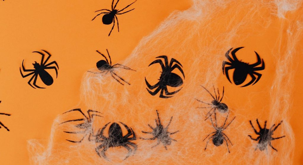 pókok, invázió