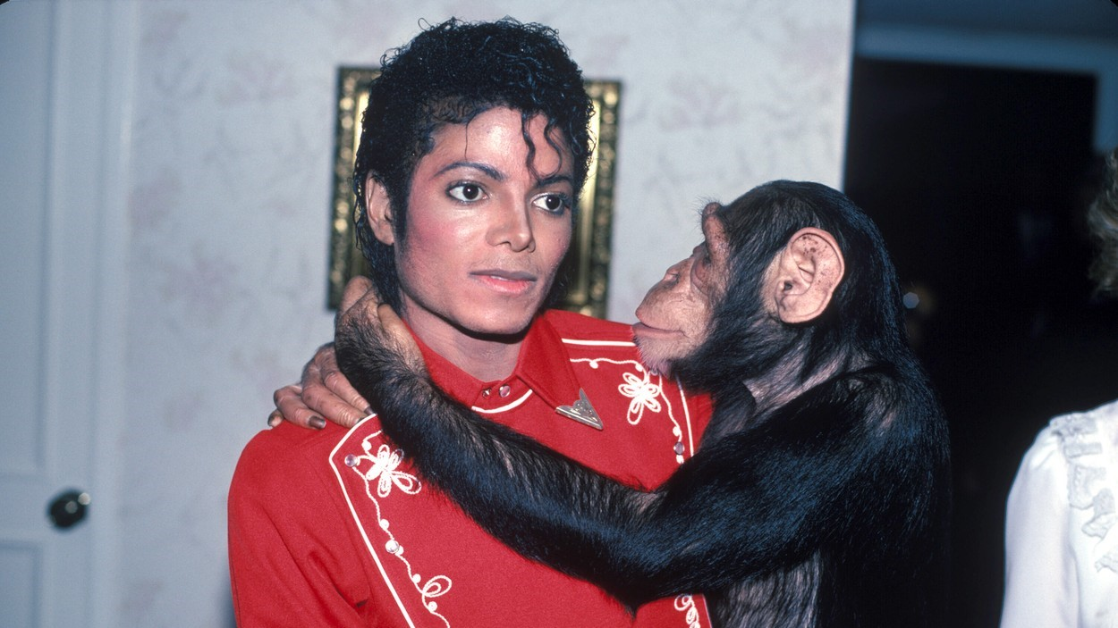 Michael Jackson és Bubbles 1984-ben.