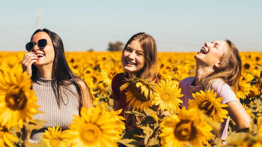 nevető lányok napraforgóban
