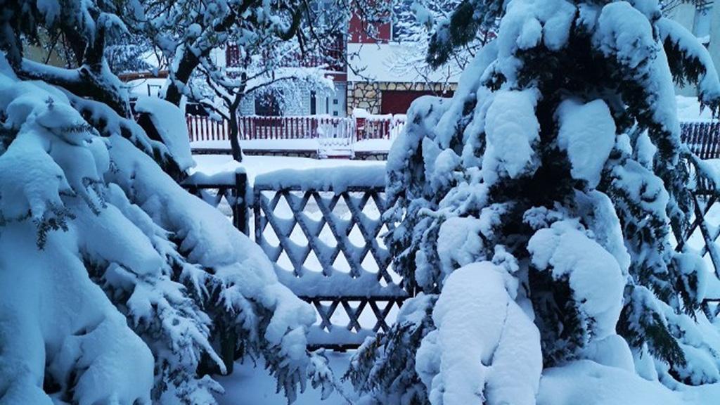 Bakonyi hóesés
