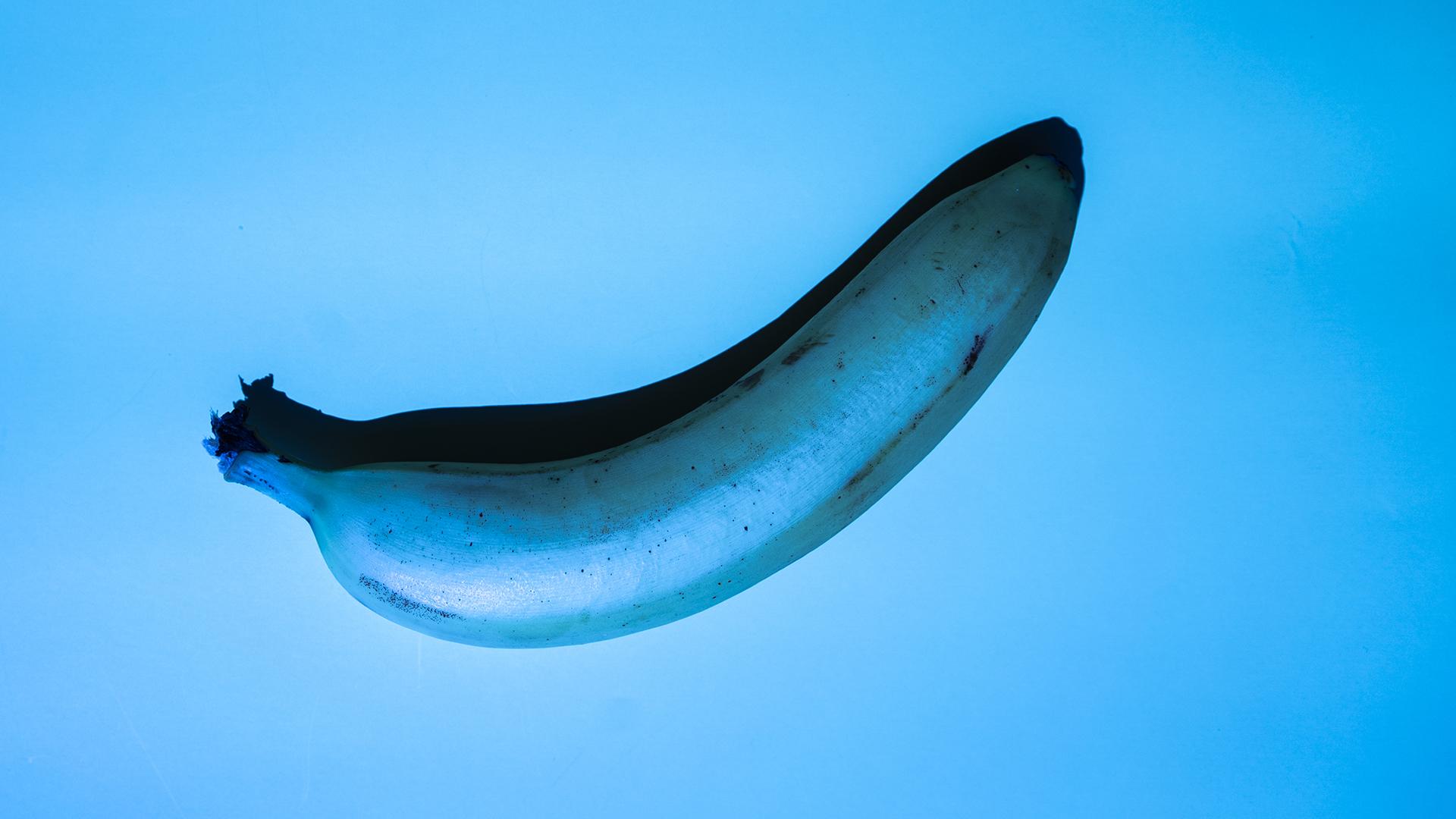 Megtalálták a kék ételfesték természetese alternatíváját
