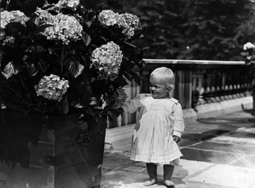 Az egyéves Fülöp herceg