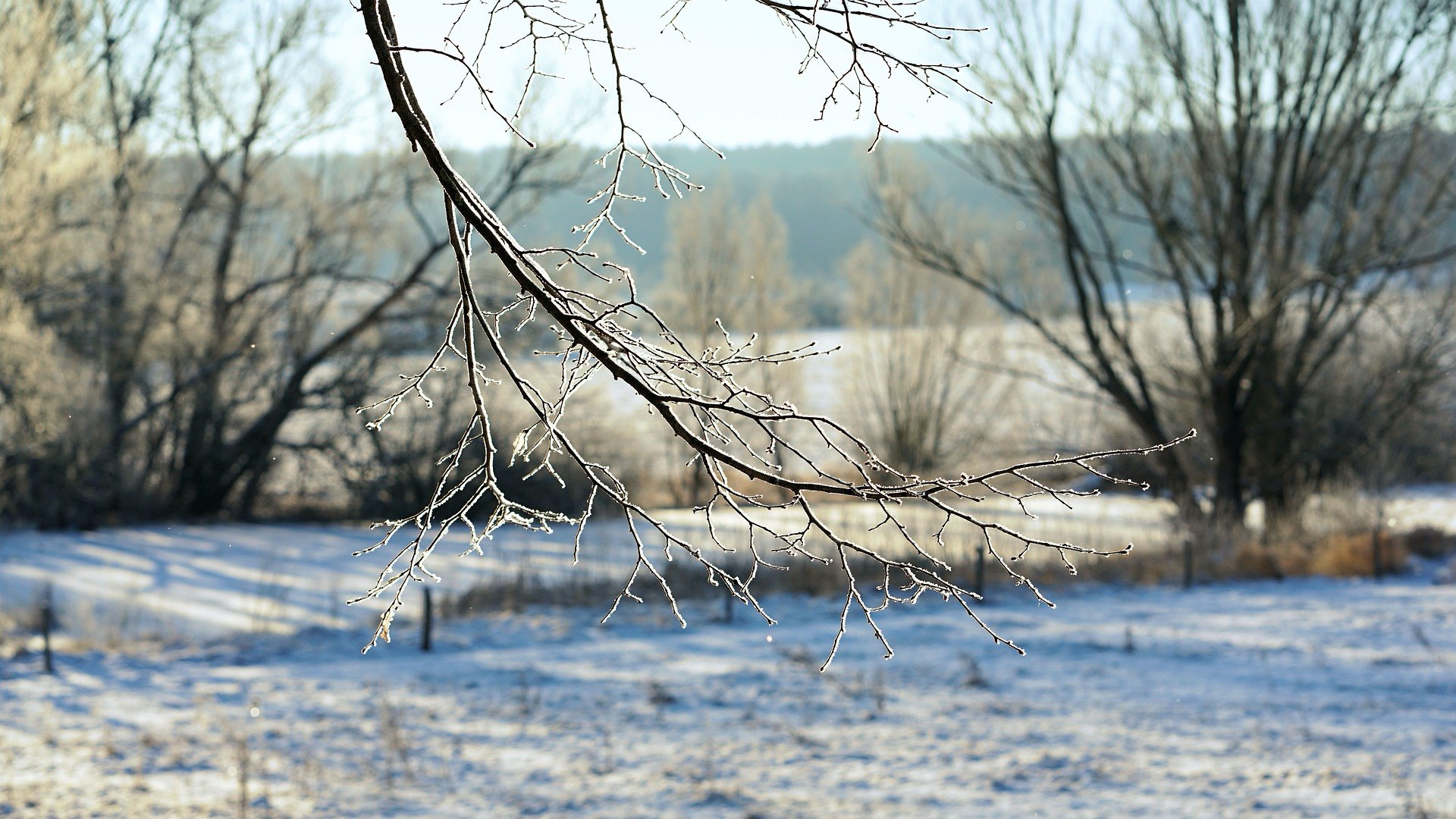 Hideg tavaszi időjárás