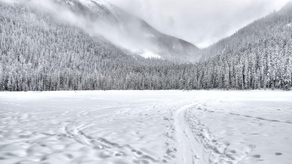 hó, hóesés