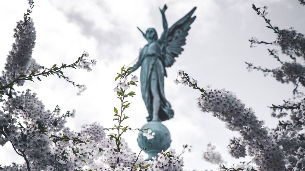 angyal virágzó ágakkal