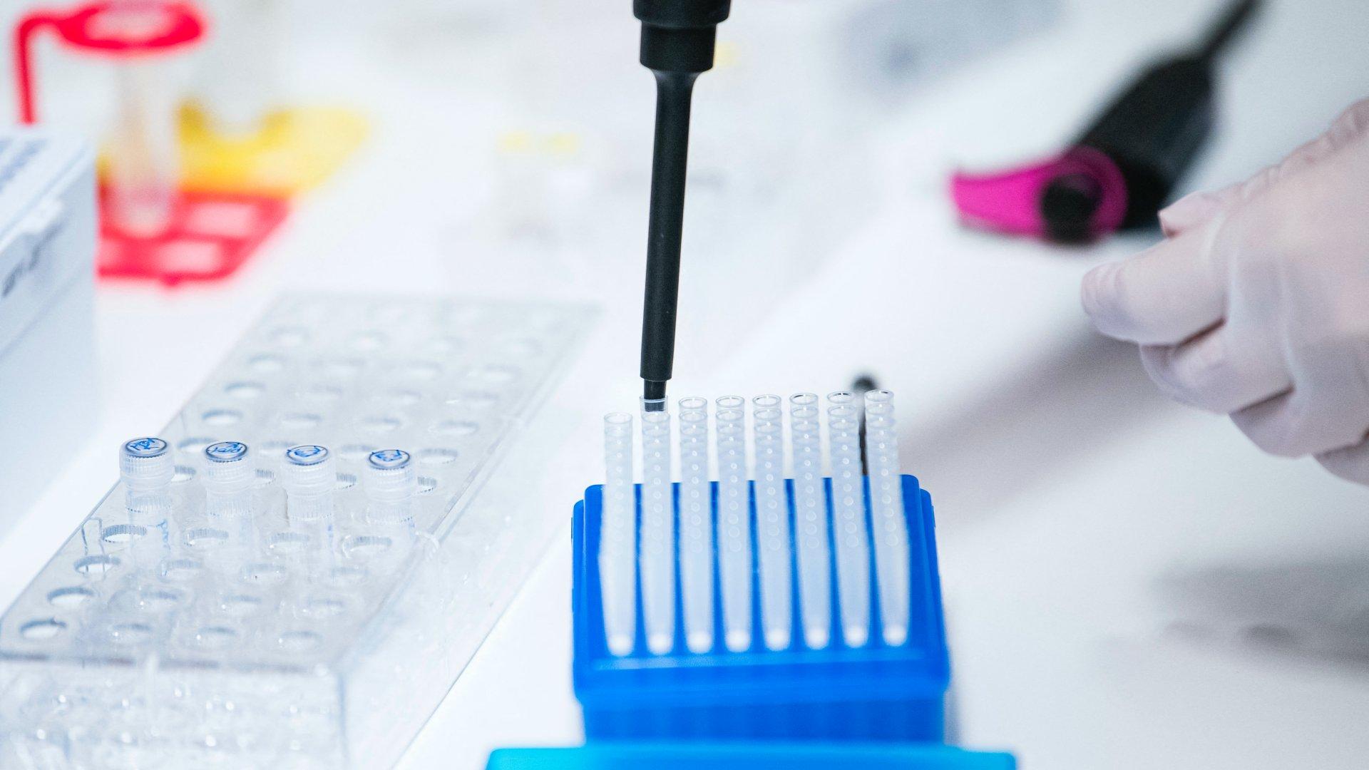 Koronavírusteszt laboratóriumban