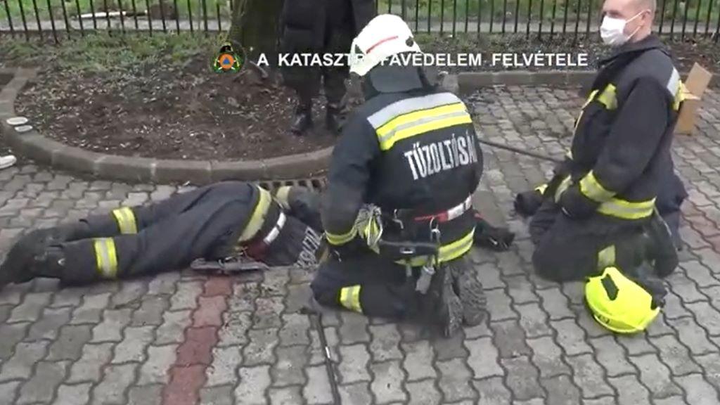 macskák, tűzoltók, mentés