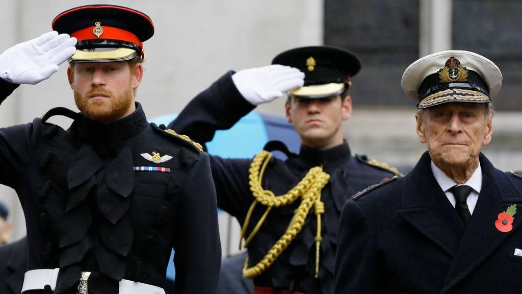 Fülöp herceg és Harry herceg 2015-ben