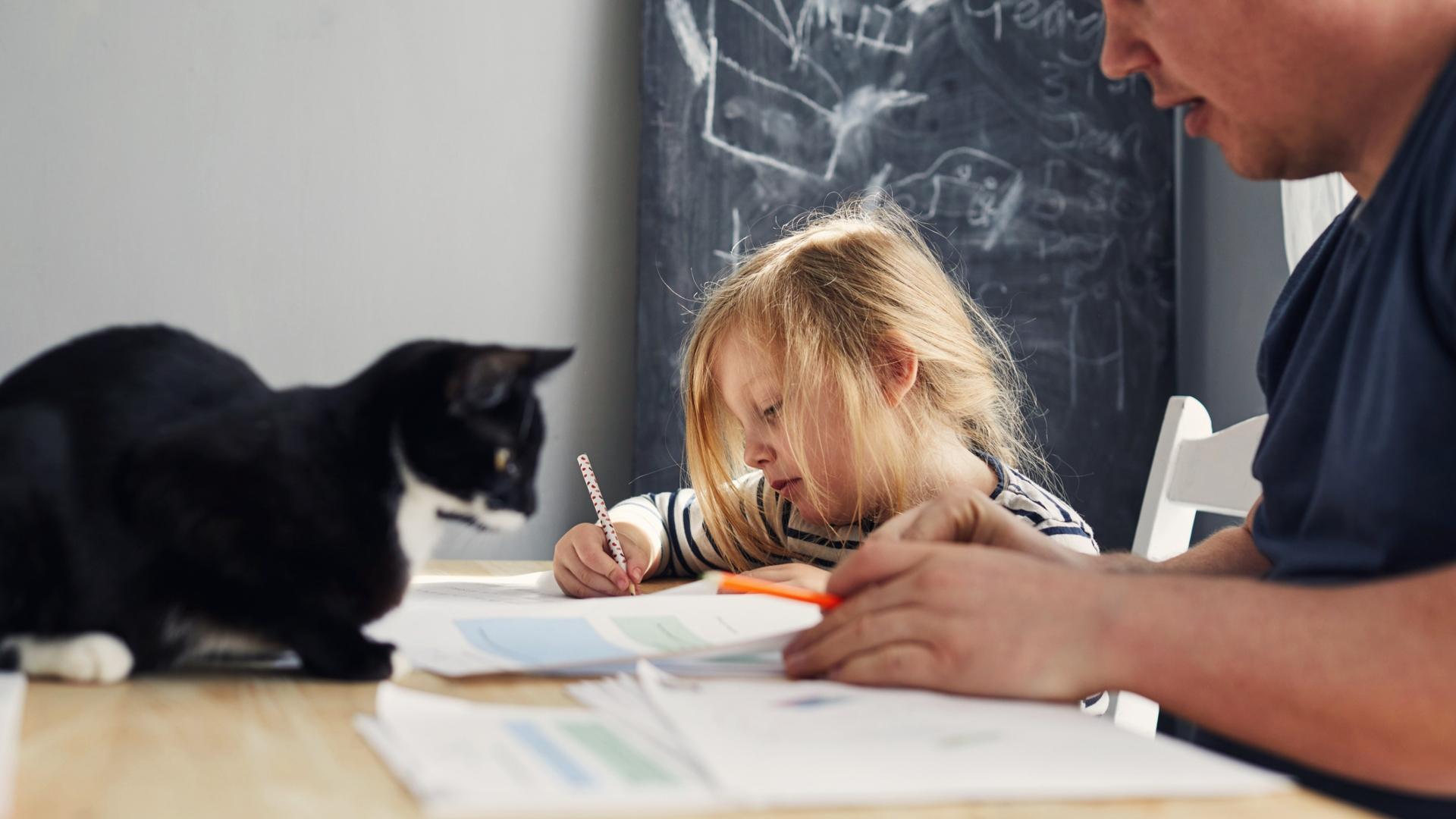 Önkéntesek segítenek a diákoknak az otthontanulásban