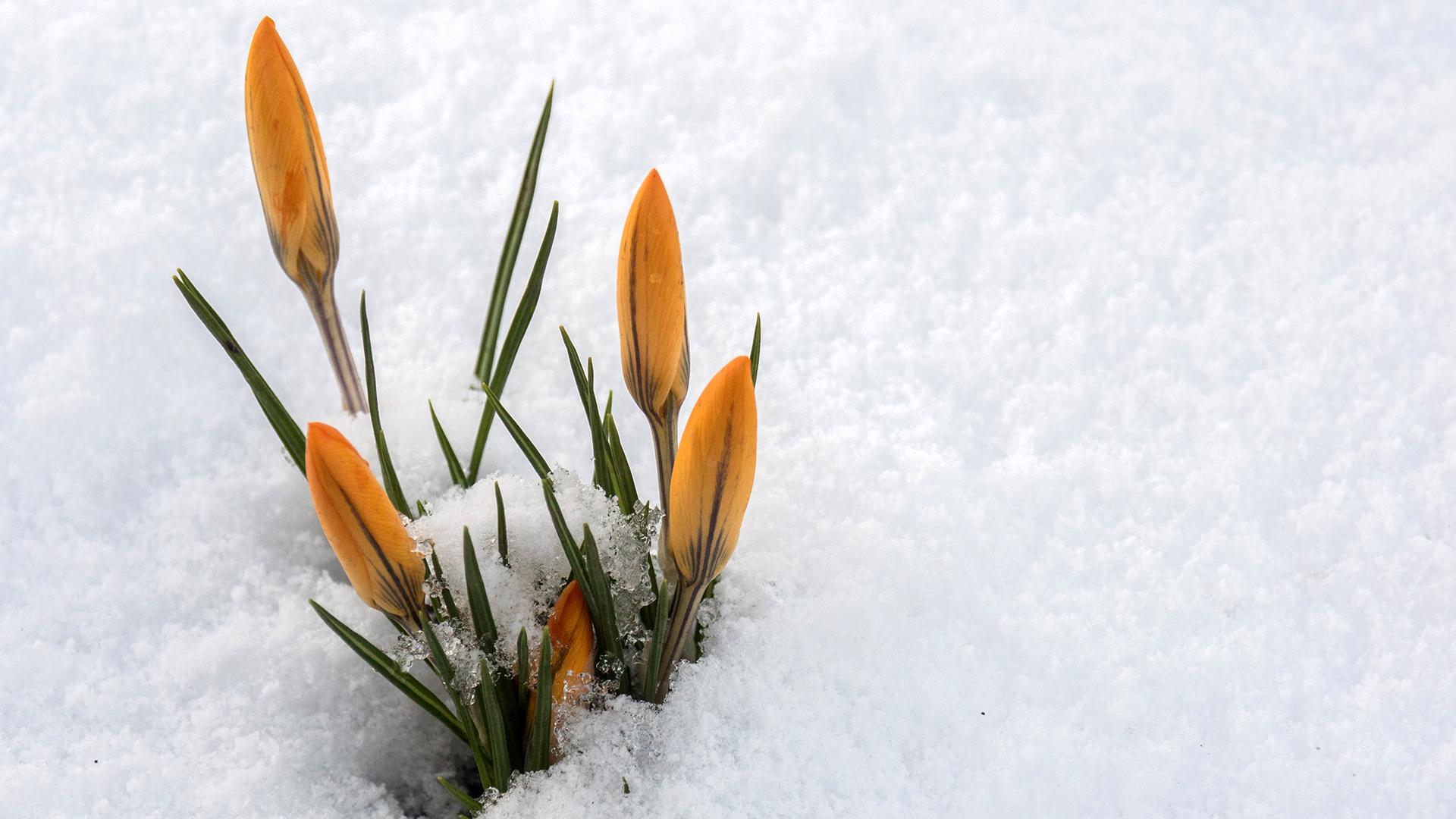 Tíz fokkal hidegebb és hó is lehet kedden