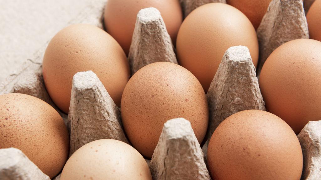 tárolja a székletet a tojásokon)