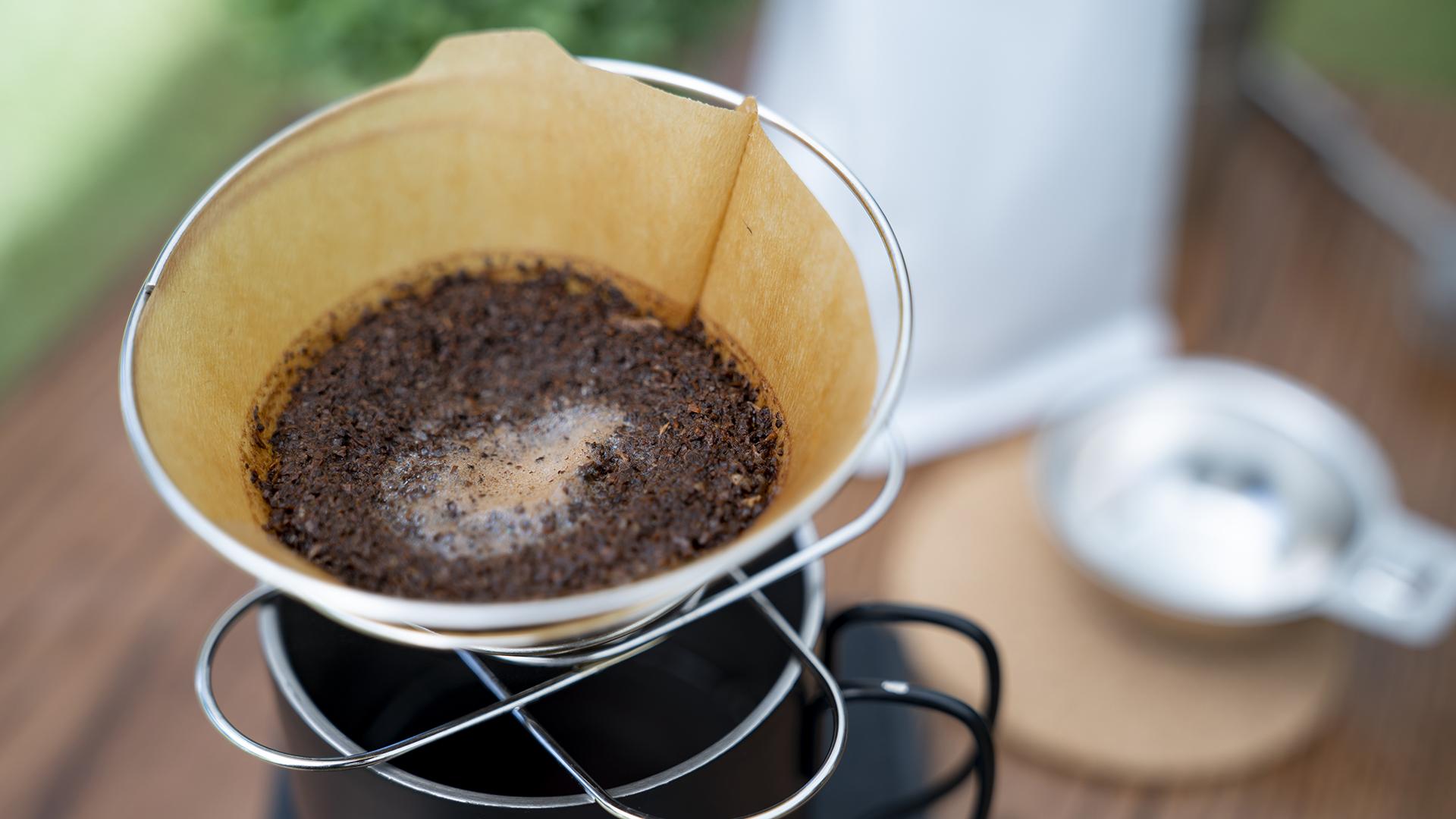 A kávézacc mentheti meg a Földet az elsivatagosodástól