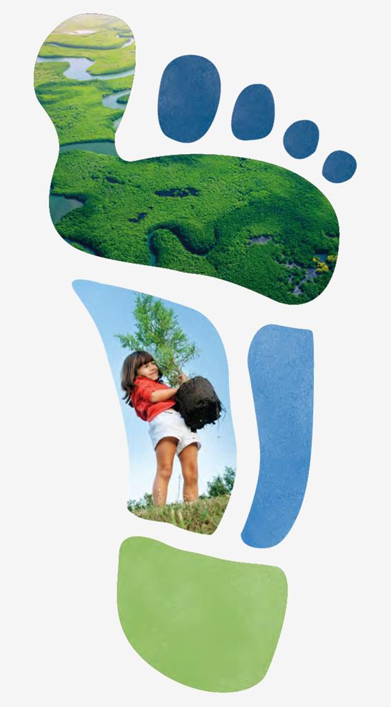 Felelős fogyasztásra ösztönző programot indít a P&G általános iskolás gyermekek részére (x)