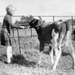 Anna hercegnő Skóciában