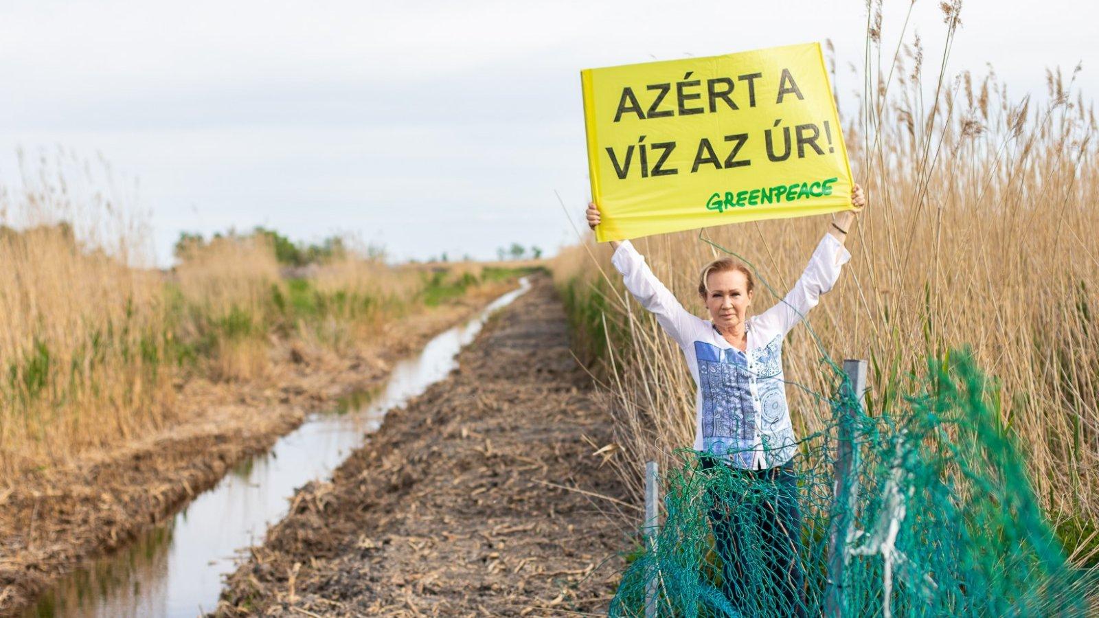 Udvaros Dorottya a Greenpeace kampányában