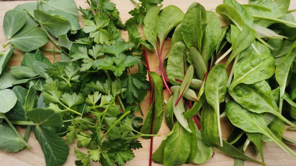 Salátának való levelek