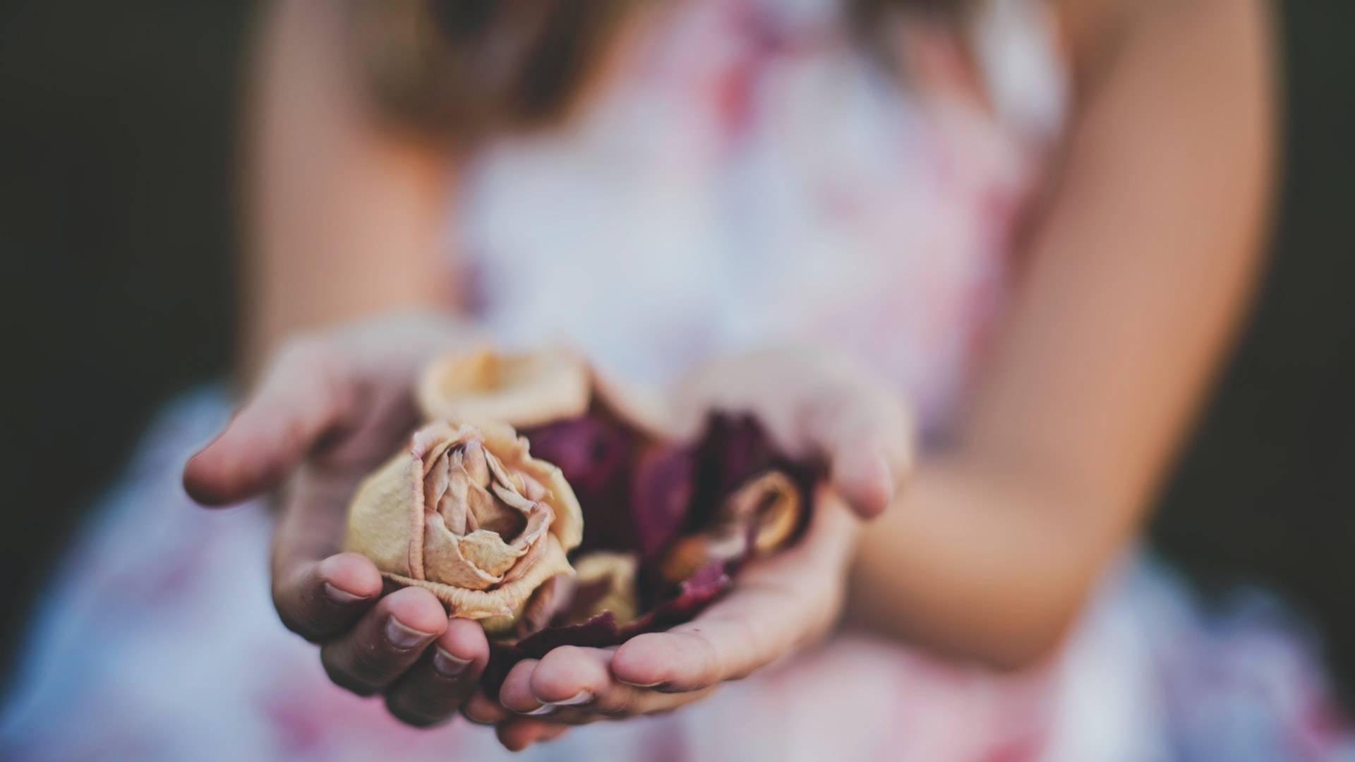 rózsát nyújtó kezek