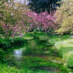 Nimfa kert Róma közelében