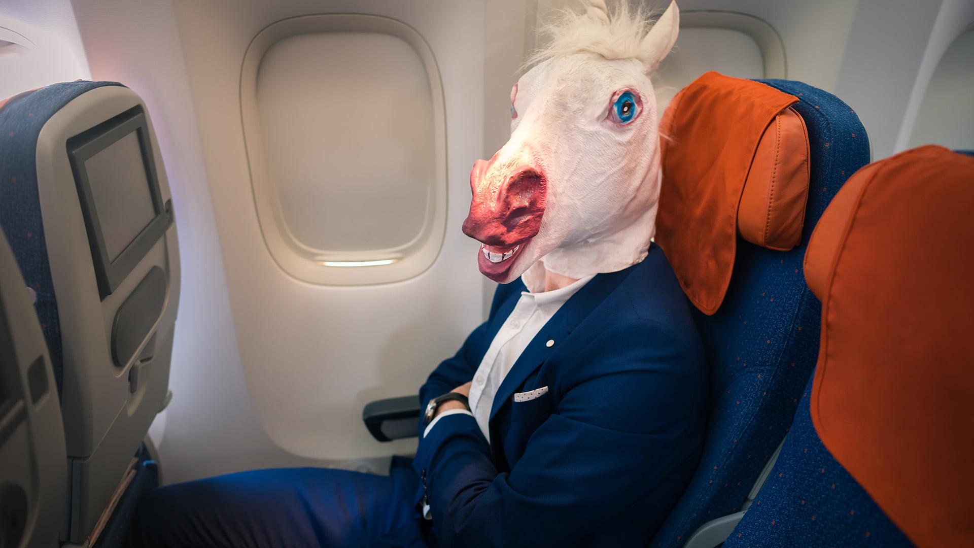 bolond utas a repülőn