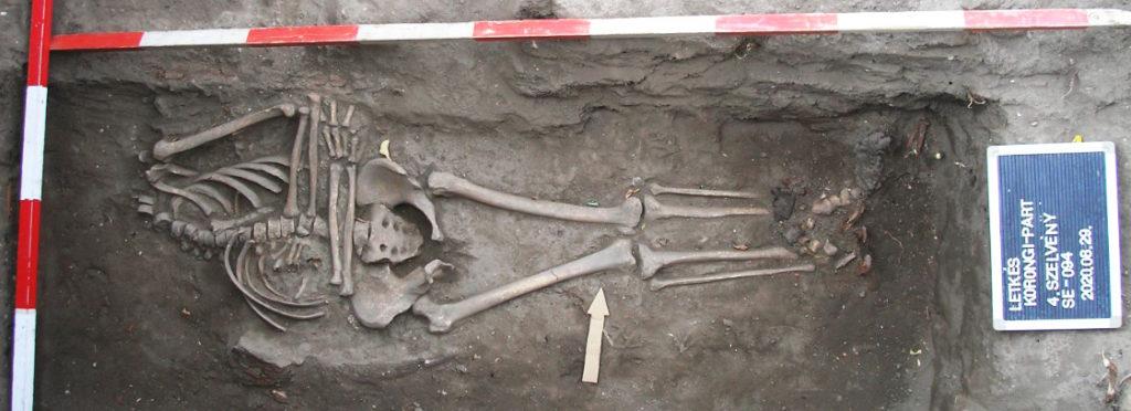 Fej nélküli 94. sír, csizma megmaradt részleteivel (Fotó: Batizi Zoltán)