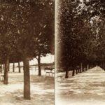 Balatonfüred - parti sétány, jobbra a távolban a móló, a századforduló idején.