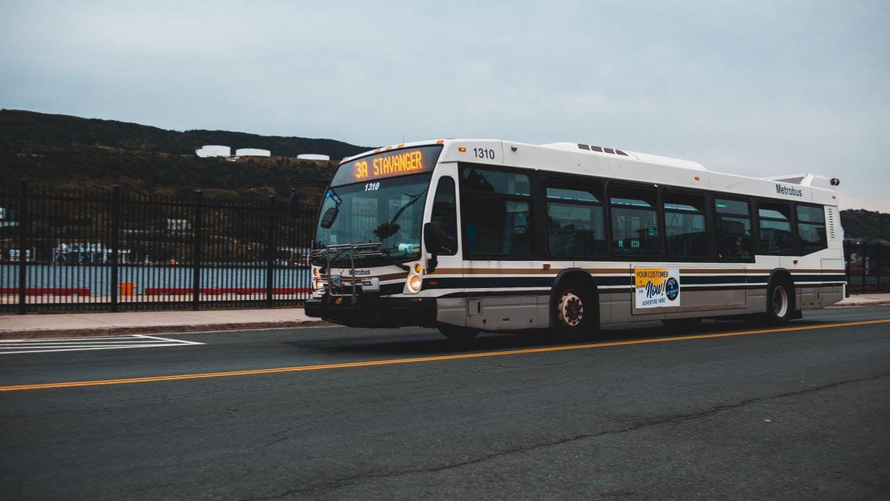 nemzetközi busz, távolsági busz