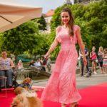 Kutyáikkal vonultak fel a sztárok a vörös szőnyegen